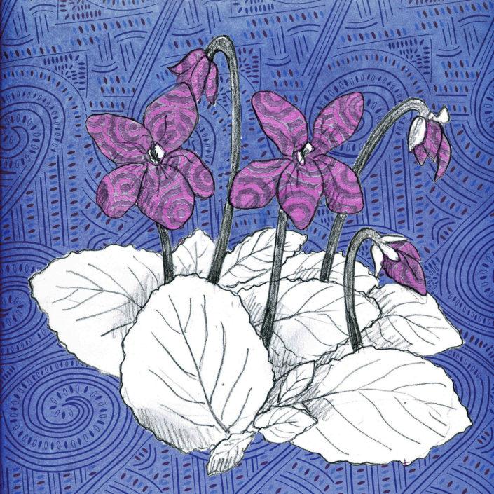 Violette, Grasse